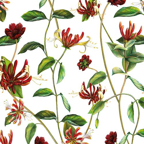 Honeysuckle & Chocolate Cosmos Floral Pattern for Wedding invitation